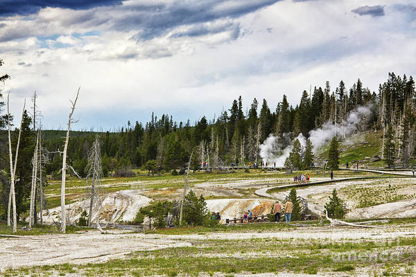 Photograph - Fuming Geysers In Yellowstone National Park by Tatiana Travelways