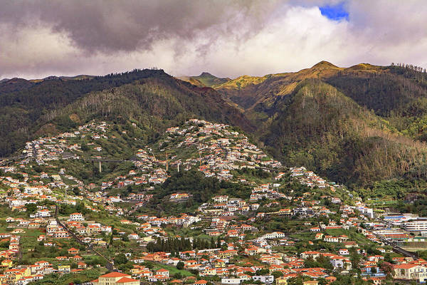 Photograph - Funchal Madeira by Tony Murtagh