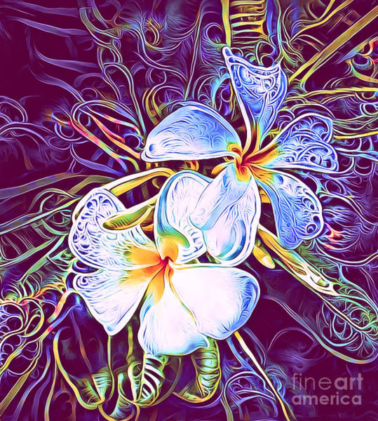 Queensland Digital Art - Funky Frangipani by Trudee Hunter