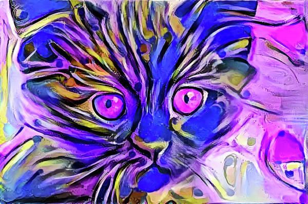Digital Art - Funny Face Kitten Purple Eyes by Don Northup