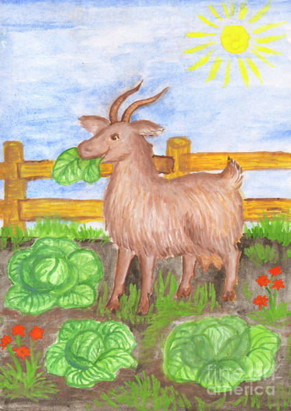 Painting - Funny Goat And Cabbage by Irina Dobrotsvet