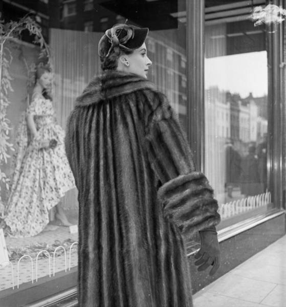 Photograph - Fur Coat by Chaloner Woods