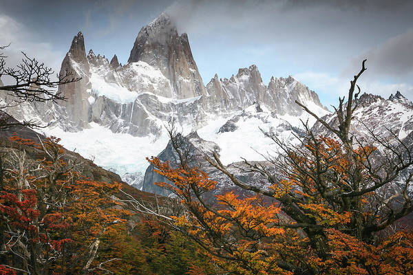 Patagonia Photograph - Futrone by Ryan Weddle