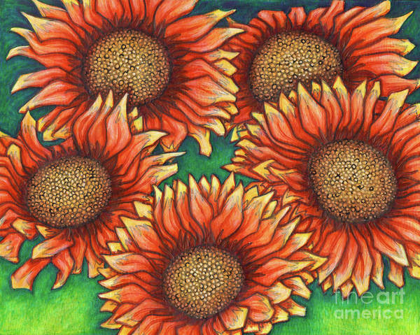 Painting - Gaillardia by Amy E Fraser
