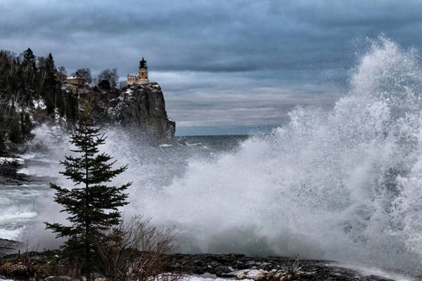 Wall Art - Photograph - Gales Of December by Mary Amerman