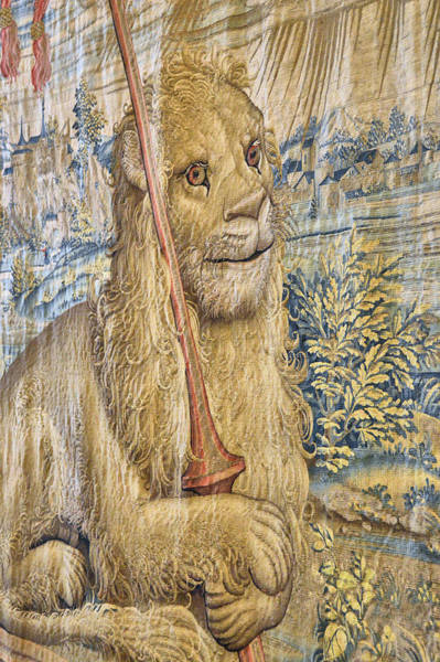 Photograph - Gallery Of Tapestries Lion by JAMART Photography