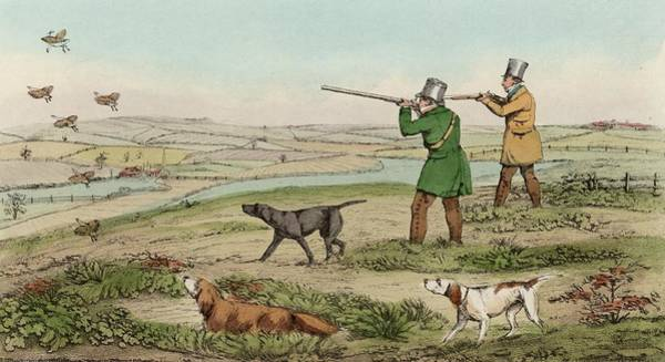 Sport Digital Art - Game Bird Shoot by Hulton Archive