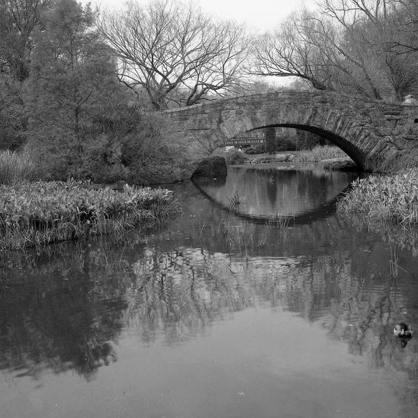 Photograph - Gapstow Bridge - Central Park - New by Holden Richards