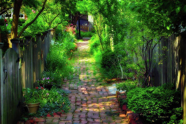Wall Art - Photograph - Garden Alley by Brian Wallace