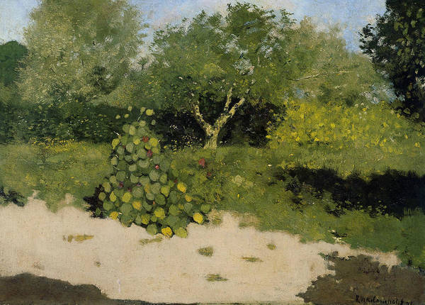 Painting - Garden Corner With East Indian Cherry by Richard Roland Holst