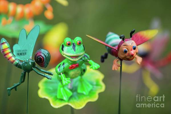 Photograph - Garden Decorations by Eva Lechner