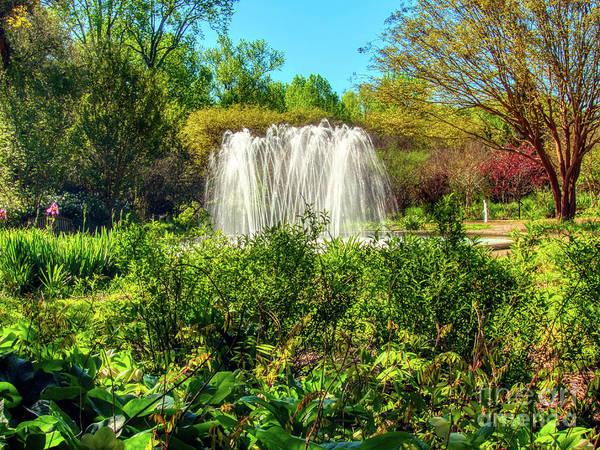 Photograph - Garden Fountain by Amy Dundon