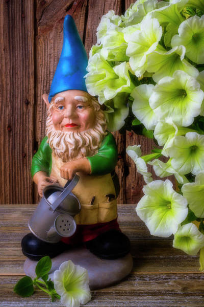 Wall Art - Photograph - Garden Gnome With Petunias by Garry Gay