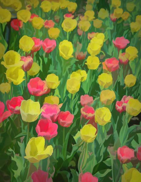 Wall Art - Photograph - Garden Magic by Lorraine Baum