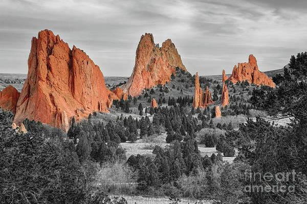 Photograph - Garden Of The Gods Colorado Bwsc by James BO Insogna