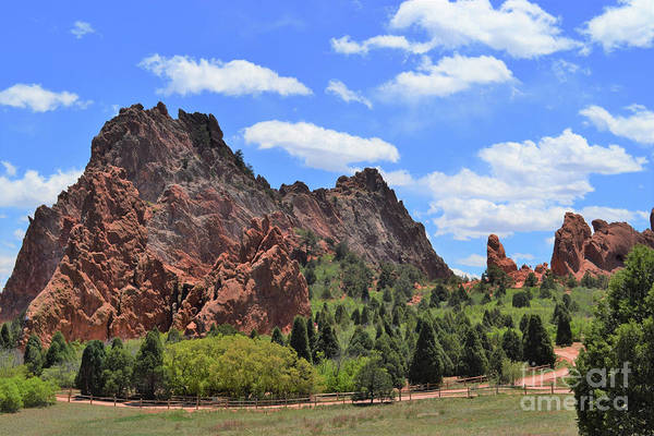 Wall Art - Photograph - Garden Of The Gods by Suzanne Wilkinson