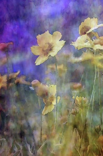 Photograph - Garden Rain 7008 Idp_2 by Steven Ward