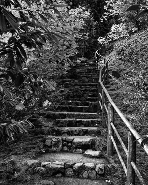 Portland Wall Art - Photograph - Garden Stairs by Joseph Smith