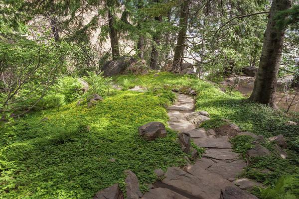 Photograph - Garden Stroll by Kristopher Schoenleber