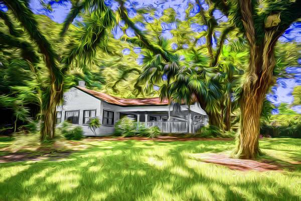 Photograph - Garden View Series 63 by Carlos Diaz