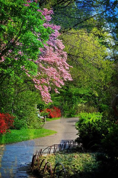 Photograph - Garden Walk by Marty Koch
