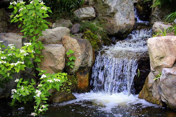 Photograph - Garden Waterfall by Cynthia Guinn