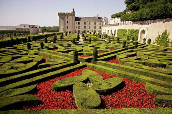 Villandry Photograph - Gardens At Villandry, France by Arthur Tilley