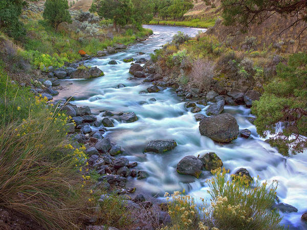 Wall Art - Photograph - Gardiner River, Yellowstone National by Tim Fitzharris