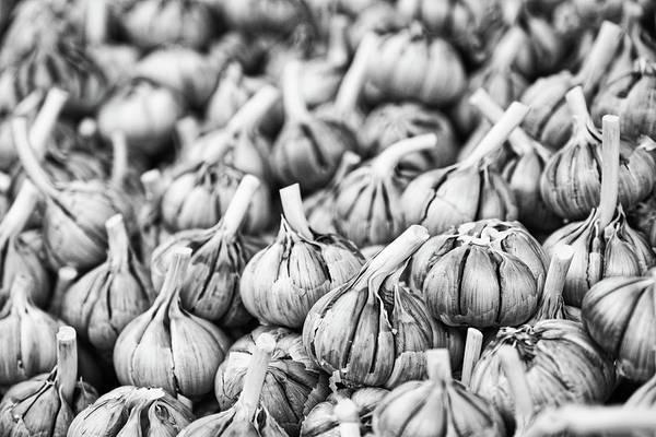 Photograph - Garlic Bulbs - Morocco by Stuart Litoff