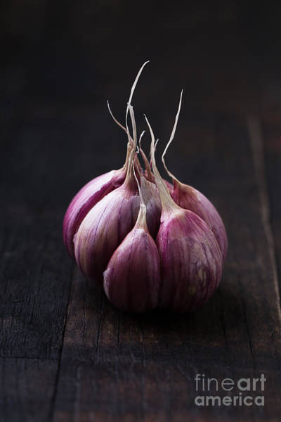 Raw Wall Art - Photograph - Garlic On Vintage Wooden Table by Mateusz Gzik