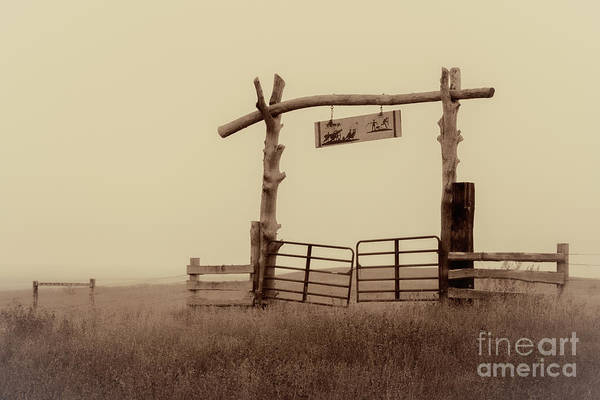 Gate In The Wilderness Art Print