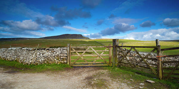 Jason Day Photograph - Gates To Farm Field And Pen-y-ghent In by Jason Friend