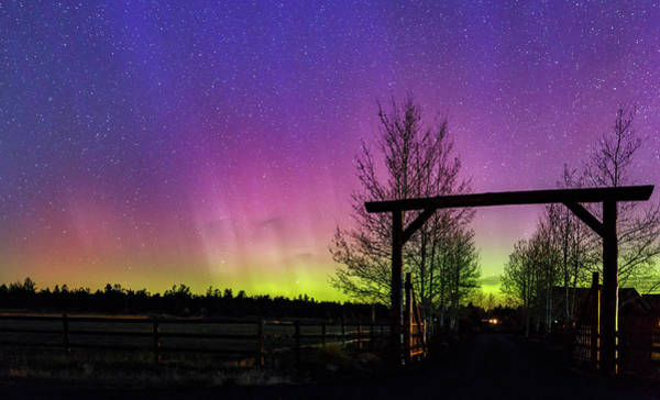 Wall Art - Photograph - Gateway To The Aurora by Cat Connor