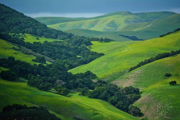 Photograph - Gaviota State Park Hills by Kyle Hanson