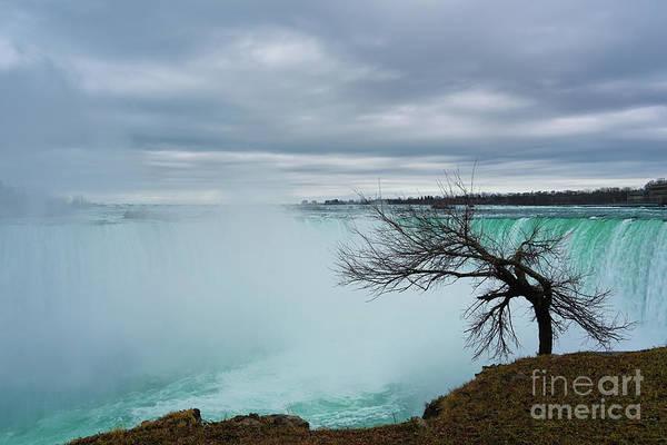 Photograph - Gazing At Horseshoe Falls by Rachel Cohen