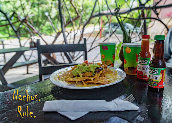 Wall Art - Photograph - Gecko's Waterfall Grill Nachos Rule by Betsy Knapp