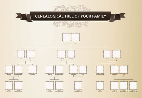 Border Wall Art - Digital Art - Genealogical Tree Of Your Family by Extezy