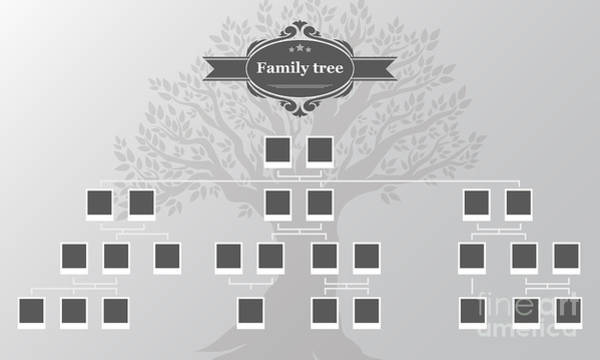 Branch Wall Art - Digital Art - Genealogical Tree Of Your Family.hand by Galastudio