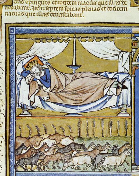 Painting - Genesis Pharaoh's Dreams by Granger