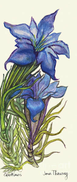 Wall Art - Painting - Gentians by Joan Thewsey