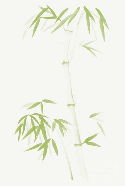 Single Leaf Mixed Media - Gentle Green Bamboo Stalk Asian Design With Bushy Leaves On Ligh by Awen Fine Art Prints