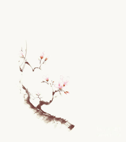 Blooming Tree Mixed Media - Gentle Sumi-e Design Of A Blossoming Sakura Branch With Pink Flo by Awen Fine Art Prints