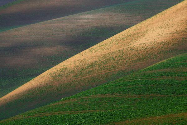 Photograph - Geometric Field Abstract by Vlad Sokolovsky