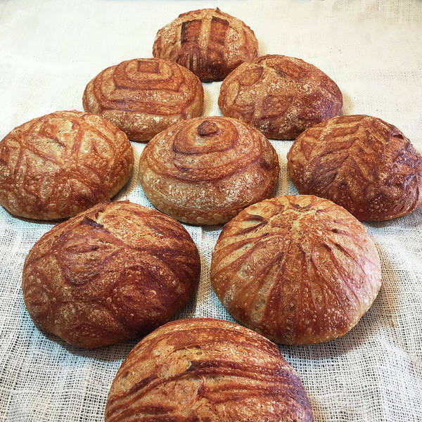 Photograph - Geometric Themed Sourdough Boules 2 by Amy E Fraser
