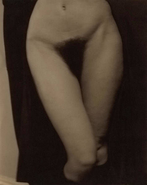 Wall Art - Painting - Georgia O'keeffe, Nude by Alfred Stieglitz