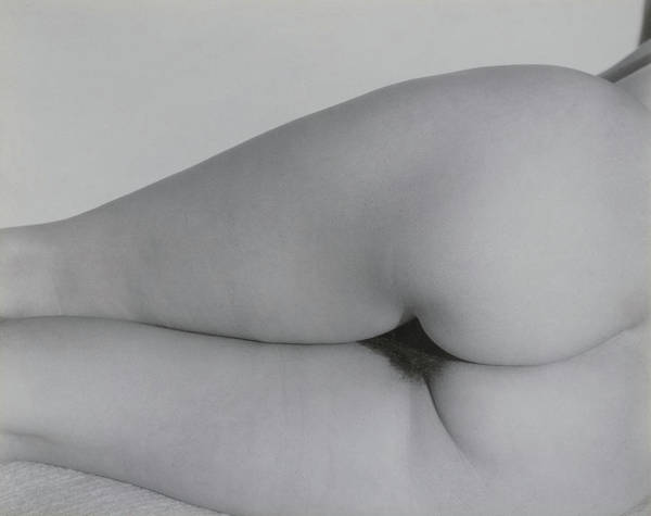 Wall Art - Painting - Georgia O'keeffe, Torso No.10 by Alfred Stieglitz