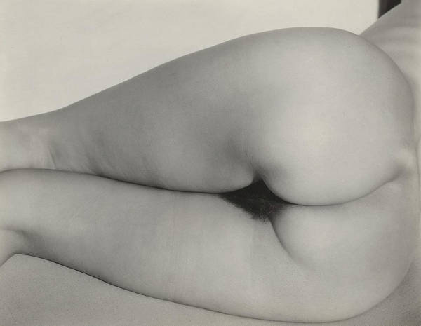 Wall Art - Painting - Georgia O'keeffe, Torso No,13 by Alfred Stieglitz