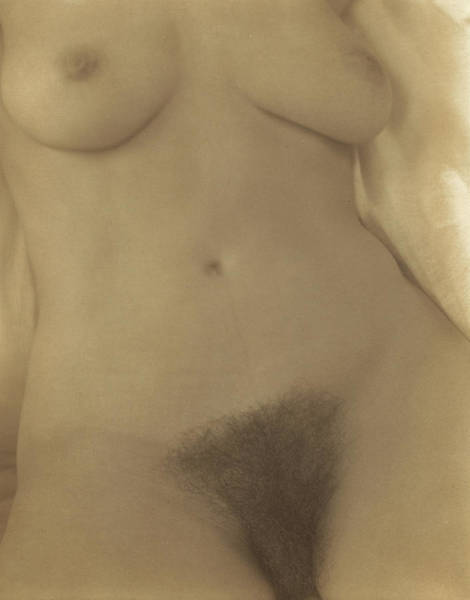 Wall Art - Painting - Georgia O'keeffe, Torso No.8 by Alfred Stieglitz