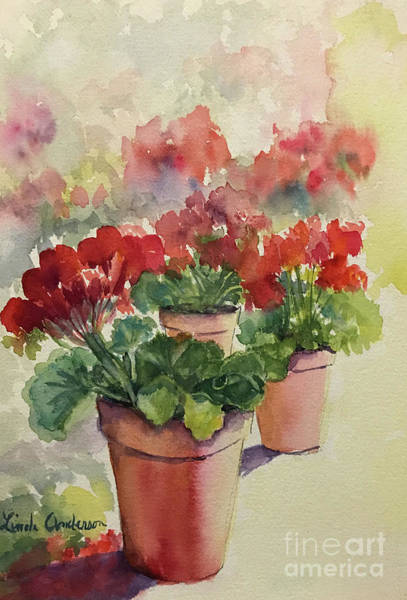 Painting - Geraniums by Linda Anderson