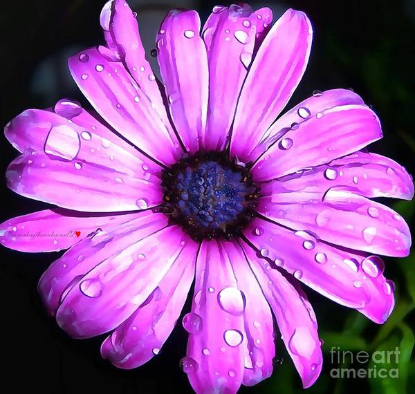 Painting - Gerber Daisy In Acrylic by Catherine Lott